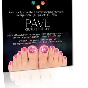 Pave-InSalon-Flyer