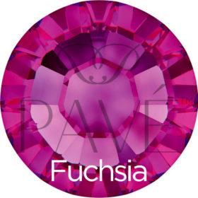 austrian_sun_fuchsia