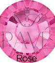 austrian_sun_rose